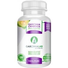 Garcinia Cambogia | 80%